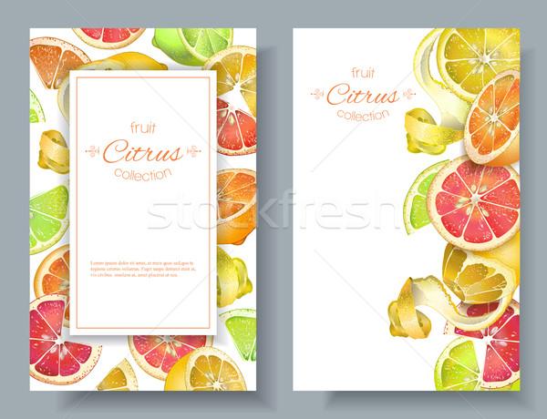 Citrus vertcal banners Stock photo © PurpleBird