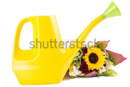 Watering can isolated Stock photo © pxhidalgo