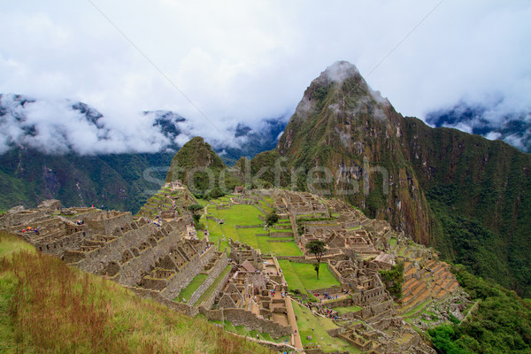 Machu Picchu ağaçlar seyahat taş tarih kayıp Stok fotoğraf © pxhidalgo