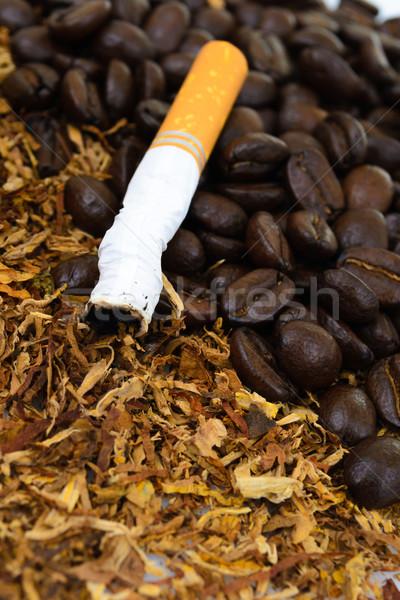 Sigaretten detail tabak rook groep Stockfoto © pxhidalgo