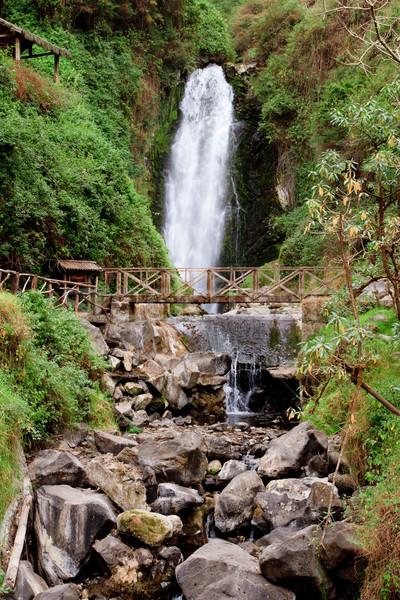 滝 熱帯雨林 空 木材 森林 ストックフォト © pxhidalgo