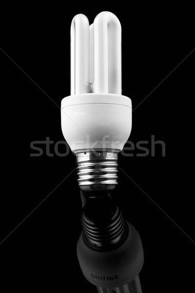 Light bulb on black background, energy saver Stock photo © pxhidalgo
