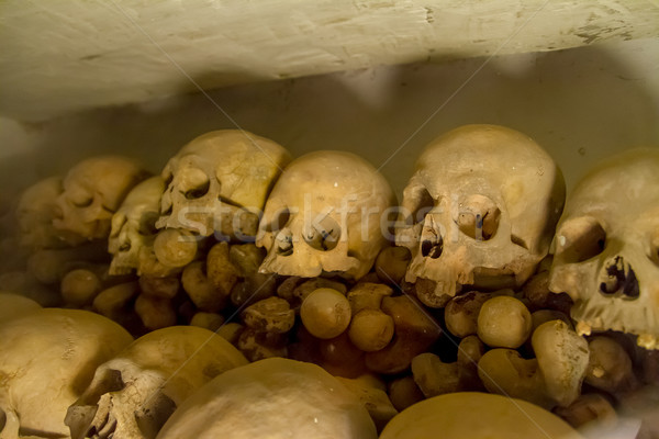Real human skulls  in  Lima, Peru Stock photo © pxhidalgo