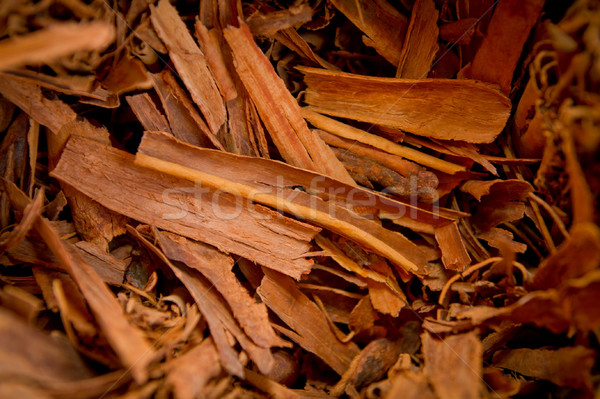 bundles of cinnamon in soft focus in background. Stock photo © pxhidalgo