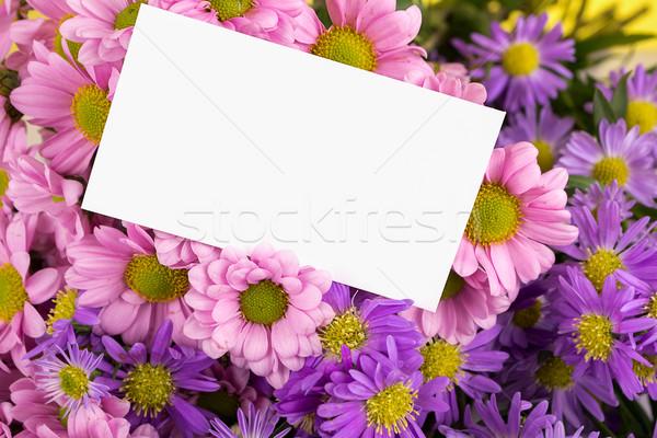 матери день приветствие бумаги девушки любви Сток-фото © pxhidalgo