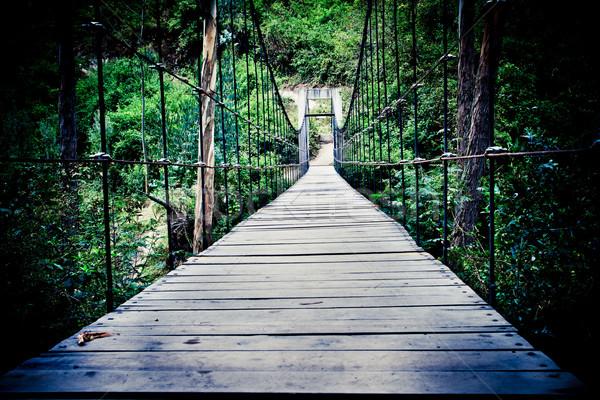 Starych zardzewiałe most Rainforest kolor scary Zdjęcia stock © pxhidalgo