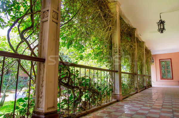 за пределами коридор испанский Эквадор путешествия архитектура Сток-фото © pxhidalgo