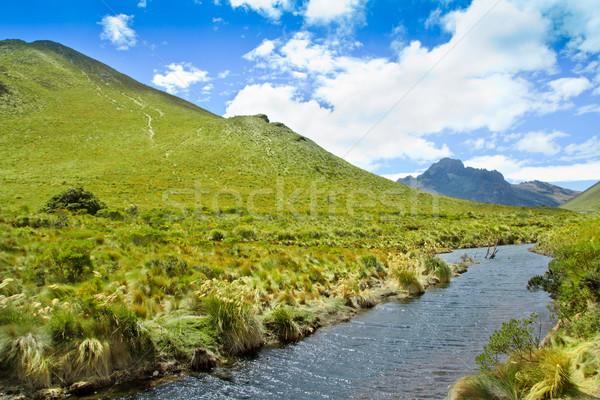 Berg rivier blauwe hemel wolken bos Stockfoto © pxhidalgo