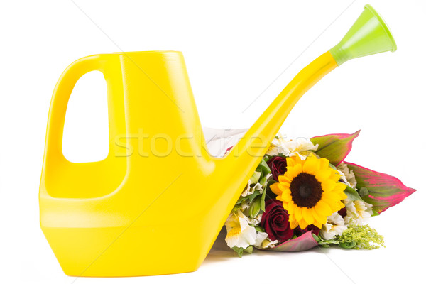 Watering can isolated with flowers Stock photo © pxhidalgo