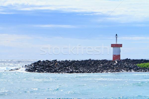 Sahil deniz feneri deniz plaj çim okyanus Stok fotoğraf © pxhidalgo