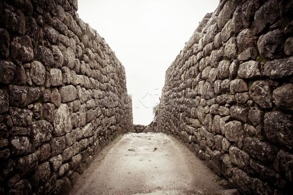 An old stone alley in machu picchu, Peru Stock photo © pxhidalgo