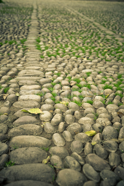 cobblestone vintage road Color processed Stock photo © pxhidalgo