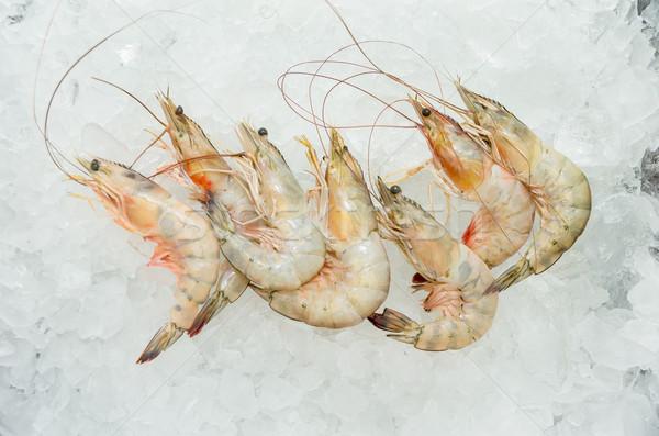 新鮮な エビ 氷 エクアドル 海 レストラン ストックフォト © pxhidalgo