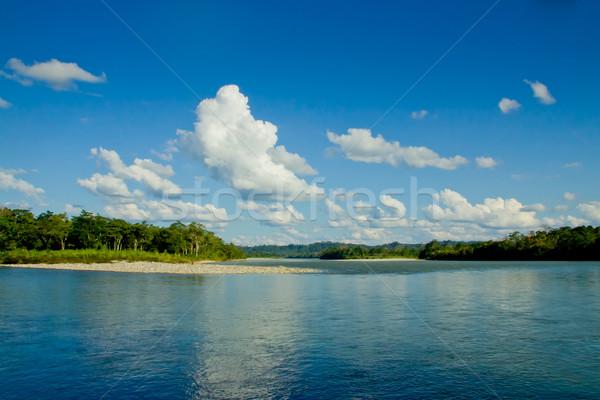 Reflexionen amazon Fluss Ecuador Dschungel Wald Stock foto © pxhidalgo