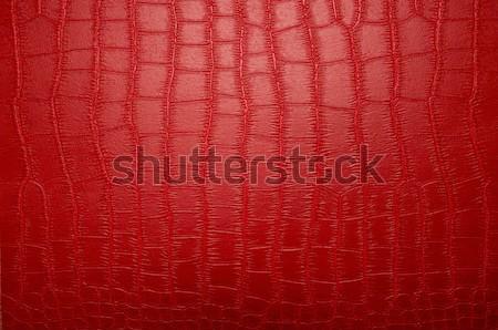 Hayvan baskı doku su balık moda Stok fotoğraf © pxhidalgo