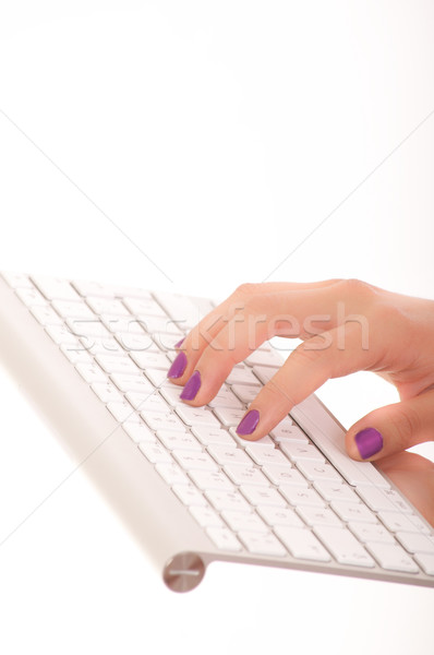 Female hands typing on white computer keyboard Stock photo © pxhidalgo