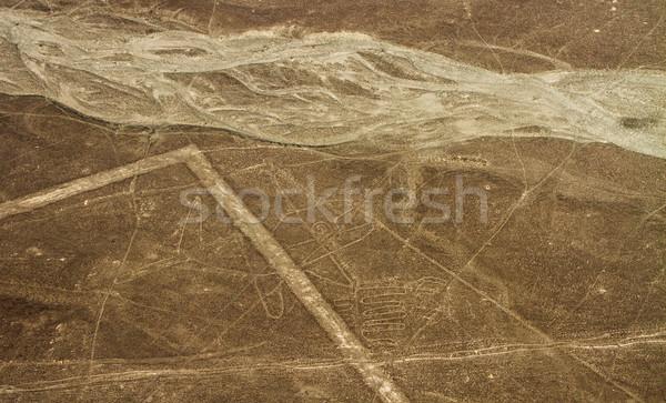 Vonalak légifelvétel Peru bálna tájkép terv Stock fotó © pxhidalgo