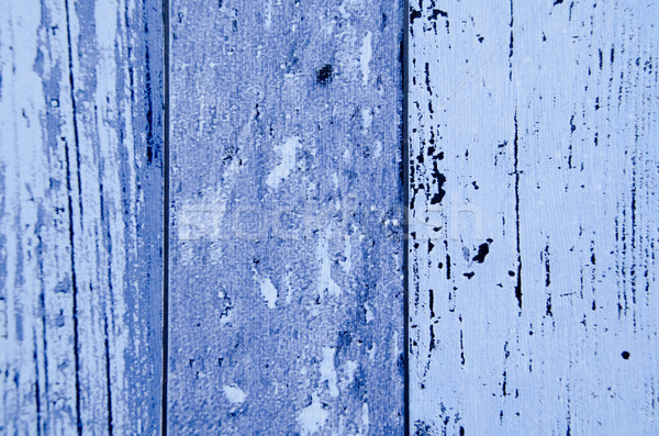 blue background wall texture Stock photo © pxhidalgo