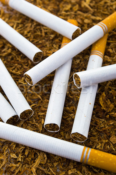 closeup of cigarettes detail on tobacco background Stock photo © pxhidalgo