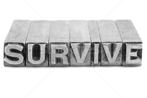 SURVIVE sign, antique metal letter type Stock photo © pxhidalgo