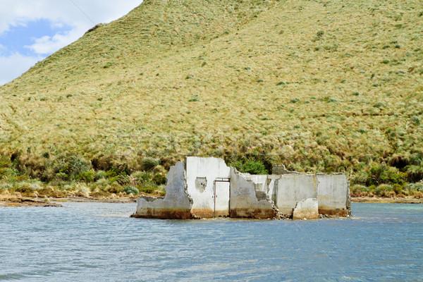 дома разрушенный выстрел Южной Америке воды здании Сток-фото © pxhidalgo