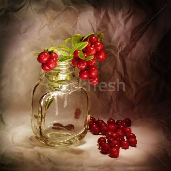 Cowberry Stock photo © pzaxe
