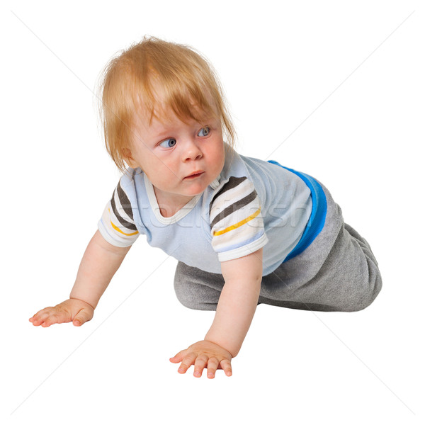 Kicsi fiú kúszás fehér baba háttér Stock fotó © pzaxe