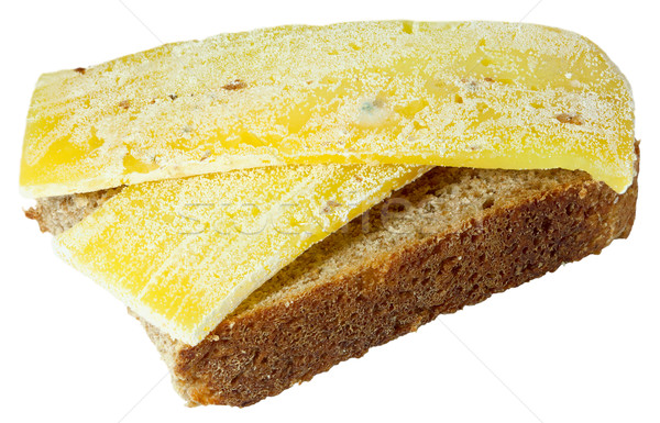 Spoiled moldy inedible sandwich with cheese on white background Stock photo © pzaxe