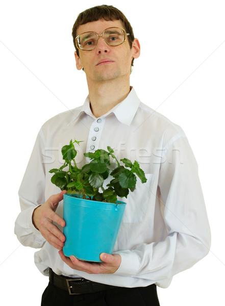 Hombre gafas ventana planta maceta retrato Foto stock © pzaxe