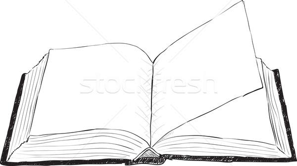 Açık Kitap Kaba Büyük Kitap Boyama çizim Vektör
