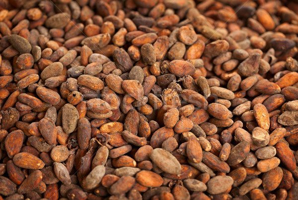 Cocoa beans background Stock photo © pzaxe