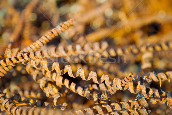 Rusty metal shaving - waste of industry Stock photo © pzaxe