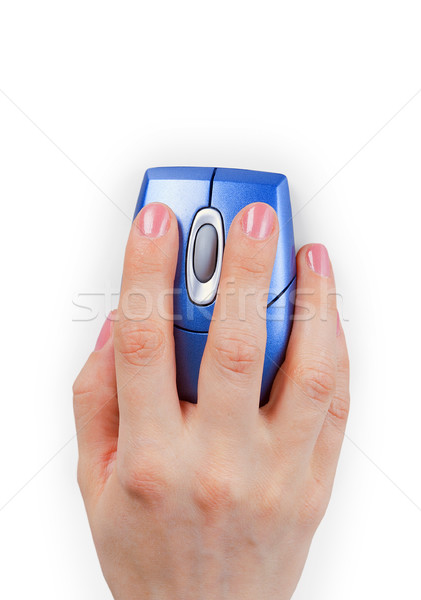 Hand holds computer mouse Stock photo © pzaxe