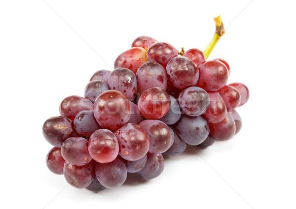 Gyülekezet érett szőlő fehér természet piros Stock fotó © pzaxe