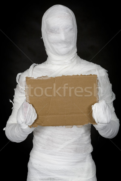 Egypt mummy and cardboard tablet Stock photo © pzaxe