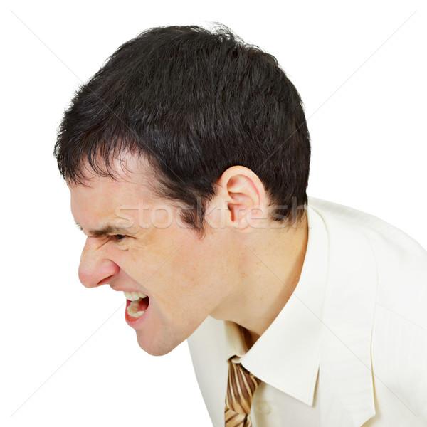 Furious men shouting on white Stock photo © pzaxe