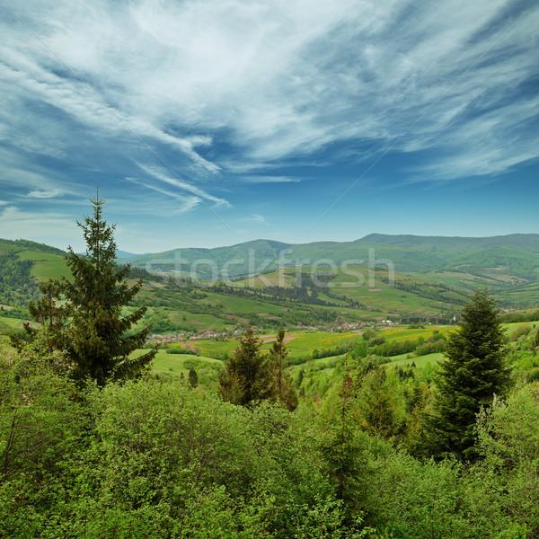Landscape - Carpathians mountains, Ukraine Stock photo © pzaxe
