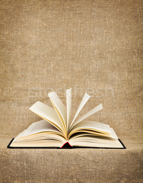 Open big book on a canvas Stock photo © pzaxe