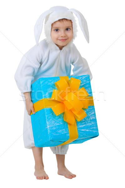 ストックフォト: 子 · ウサギ · ギフトボックス · 孤立した · 白 · 紙