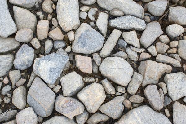 Suelo costa lago fondo patrón caída Foto stock © pzaxe