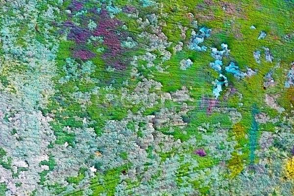 Irregolare vecchio muro verde vernice sfondo Foto d'archivio © pzaxe