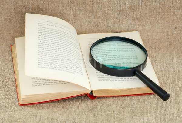 Still life of magnifying glass and old book Stock photo © pzaxe