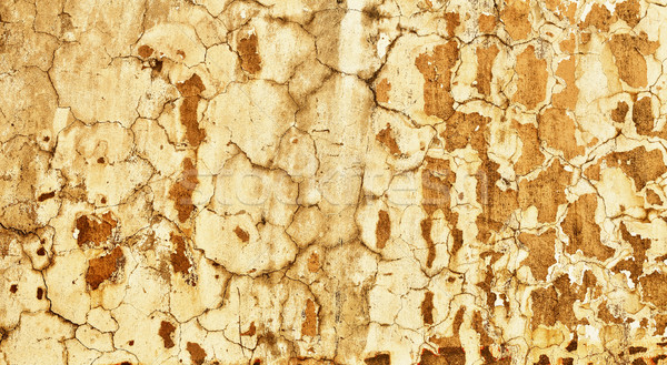 Concrete wall with old plaster - background Stock photo © pzaxe