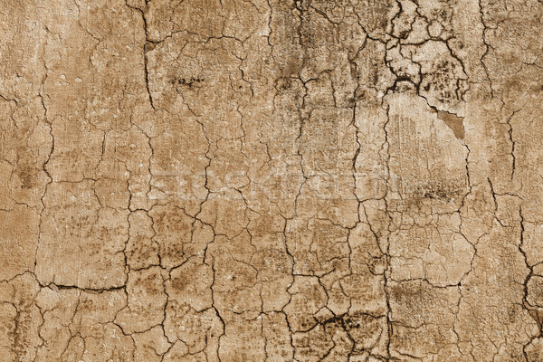 Pattern - concrete wall with cracks Stock photo © pzaxe
