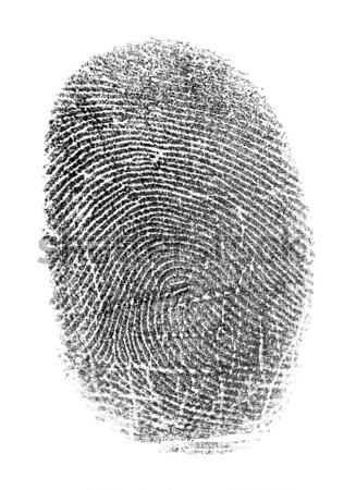 Black fingerprint isolated on white Stock photo © pzaxe