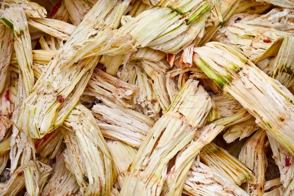 Sugarcane bagasse Stock photo © pzaxe