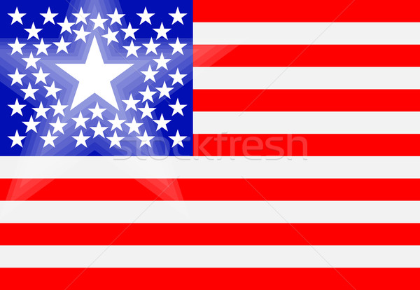 Conceptual drawing of American flag with principal state Stock photo © pzaxe