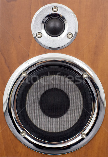 Speakers on a wooden surface Stock photo © pzaxe