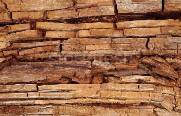 Rot houten bruin gebarsten oude natuur Stockfoto © pzaxe