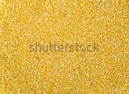 Maize cereals background Stock photo © pzaxe